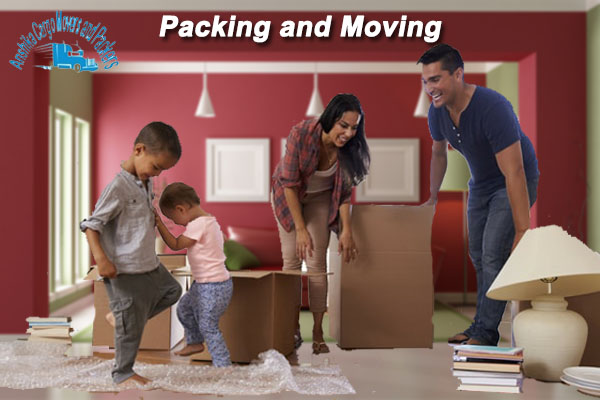 anshika cargo packers and movers